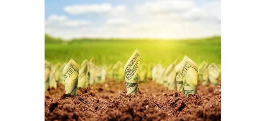 Способы инвестирования в землю