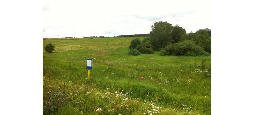 Промышленная земля в Химках — где купить?